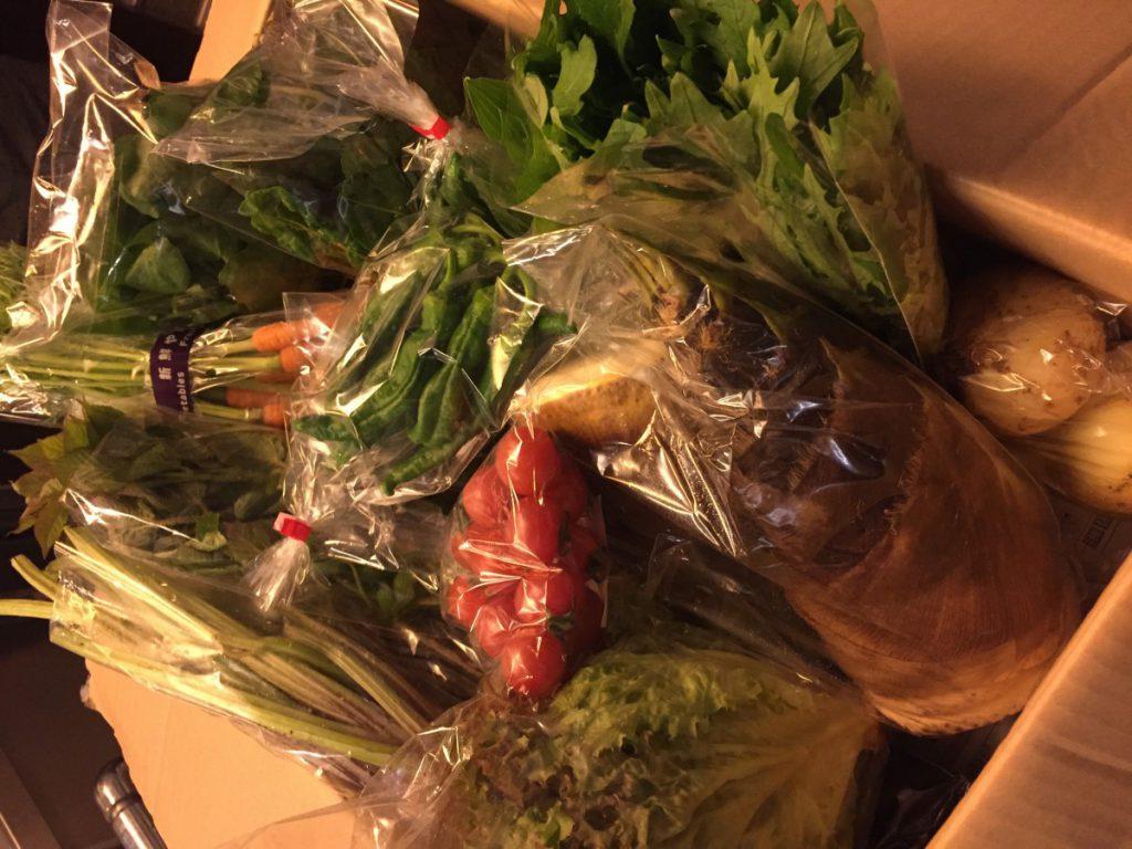 IMG_5275  今治野菜2